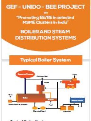 Energy Efficiency in Boiler & Steam Systems